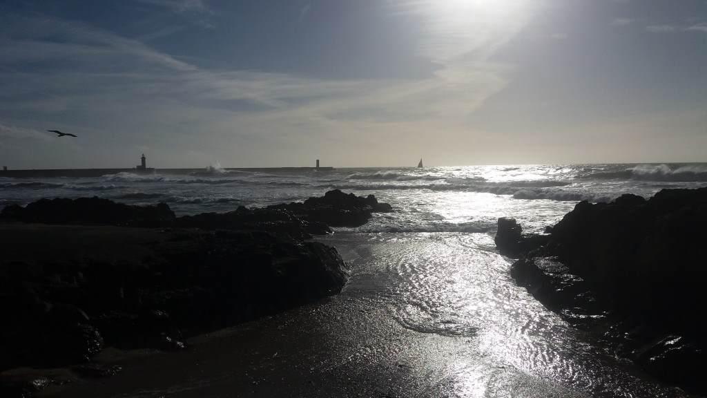 Porto okean
